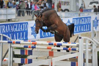 Travagliato Cavalli 2011