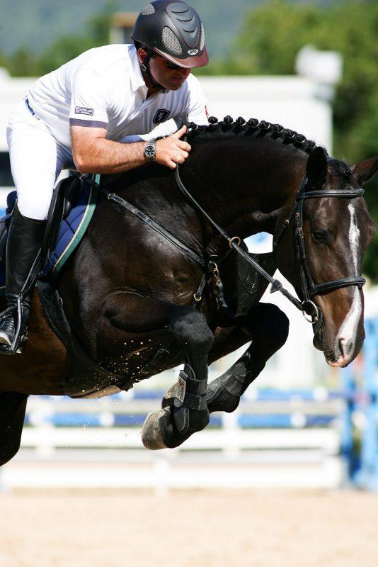 Circuito di Eccellenza FISE + Assi (15 -17 Giugno 2012)
