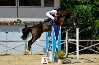 Circuito Assi: Pistoia Equestrian Centre